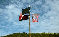 bg_banner_2011