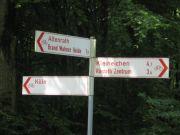 wahnerheide2009_04