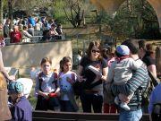 02_zoo2011
